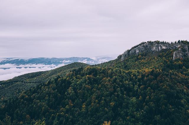 les na horách
