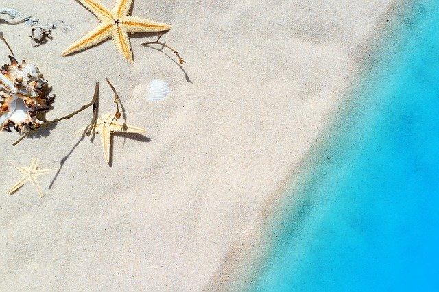 mořské hvězdy