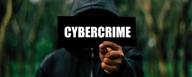 cyber zločinec